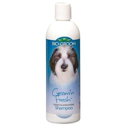 Bio-Groom-Groom-N-Fresh-Shampoo---Peso-12-Ozn