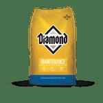 Diamond-Maintenance-Dog