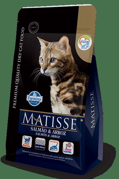 Matisse-Adulto-Salmon-y-Arroz