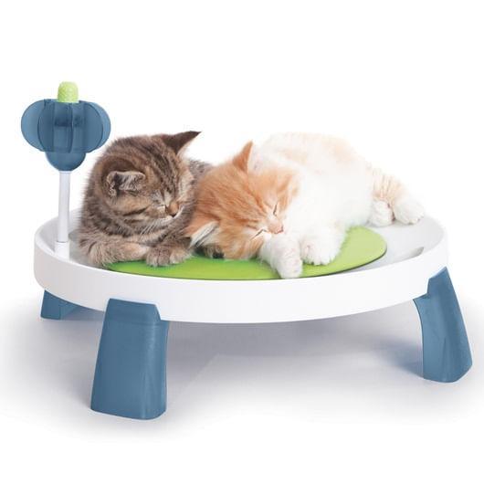 cama-gatos