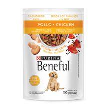 Comida Seca Perro Purina Beneful Puppy Pollo 100 Gr