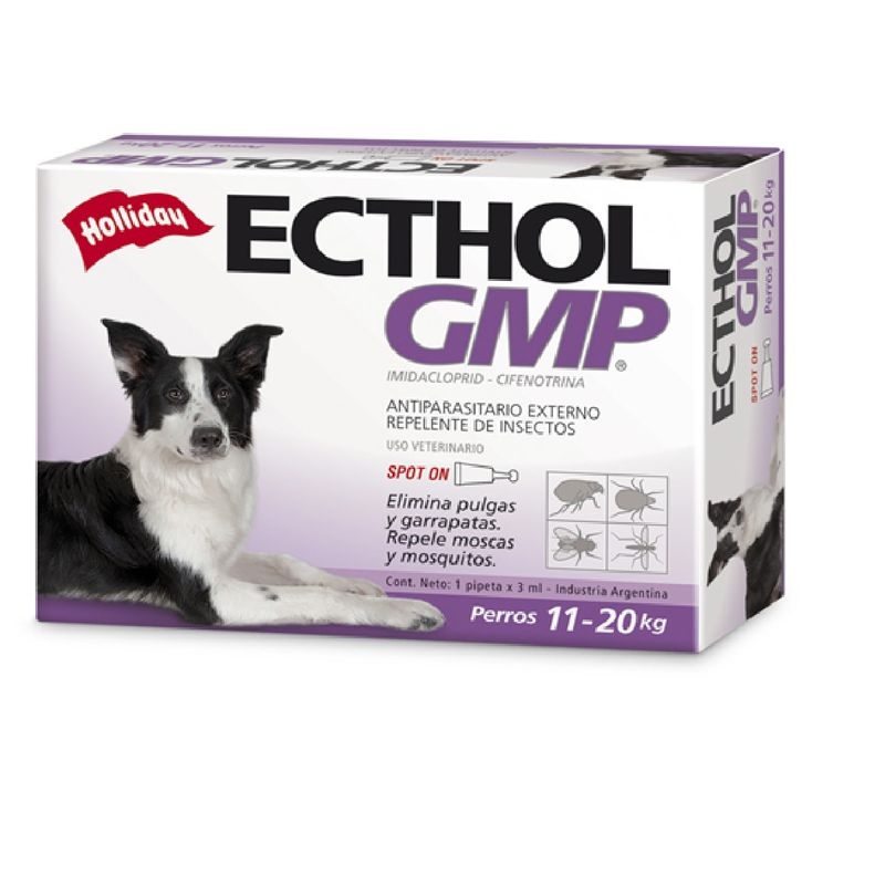 Ecthol-GMP-de-11-a-20-Kgs