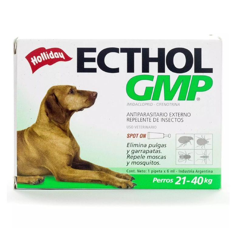 Ecthol-GMP-de-21-a-40-Kgs